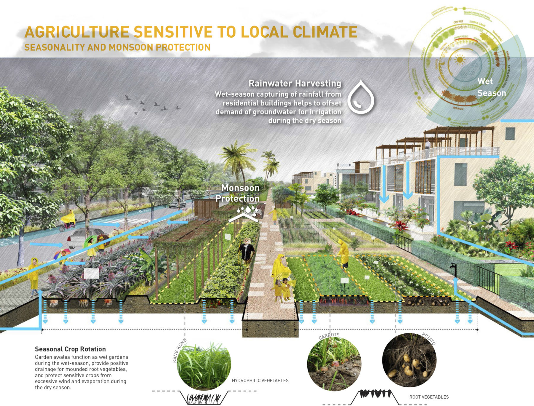 Diagram of climate sensitive agriculture