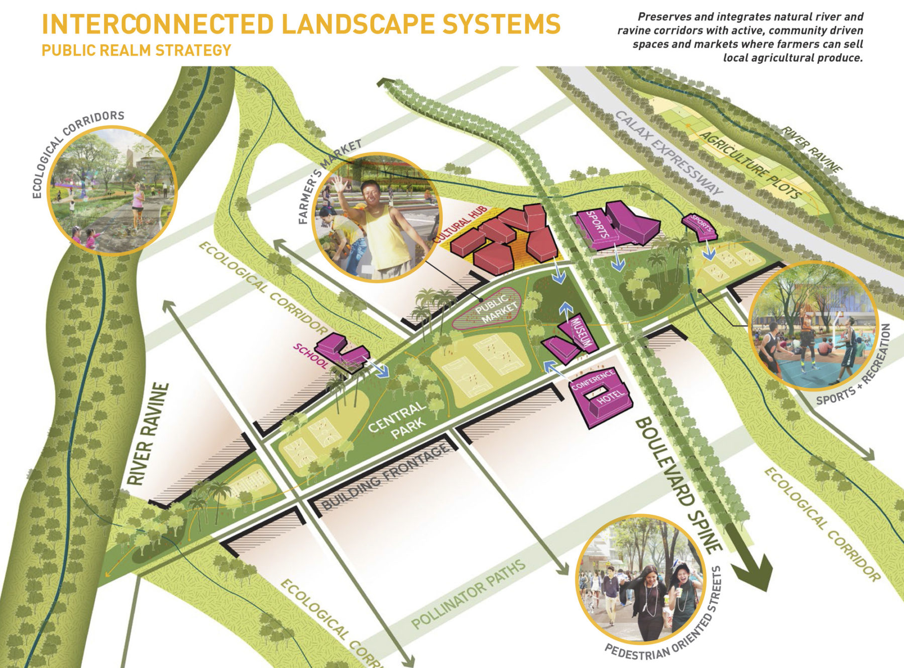 Graphic of interconnected landscape systems